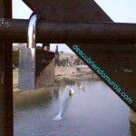 puente viejo murcia1 150x150 Candados de Amor en el Puente Viejo