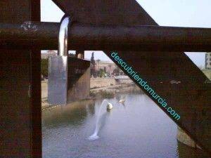 candados en el Puente Viejo Murcia3 300x225 Candados de Amor (II Parte)