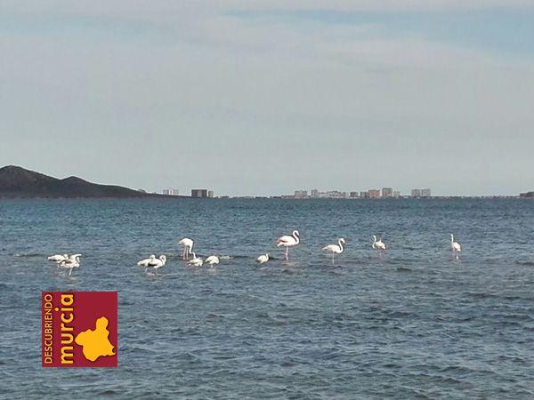 Los Urrutias Mar Menor Así se formó el Mar Menor y La Manga...