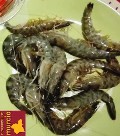 langostinos mar menor A la pesca del langostino del Mar Menor