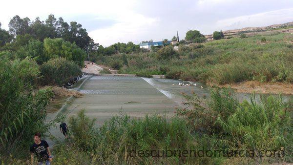 Contraparada Rio Segura La Contraparada, en estado de abandono
