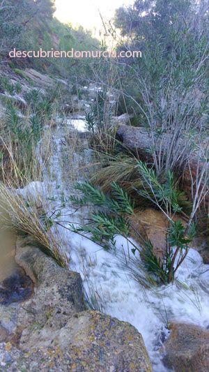 puerto cadena el valle murcia La rambla del Puerto de la Cadena en El Palmar