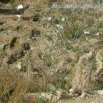 Charla sobre el descubrimiento de un posible edificio áulico en Algezares