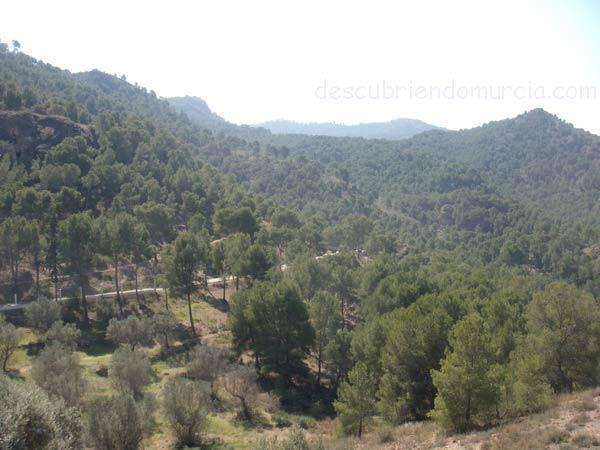 parque regional el valle carrascoy murcia Las especies en peligro de extinción de El Valle