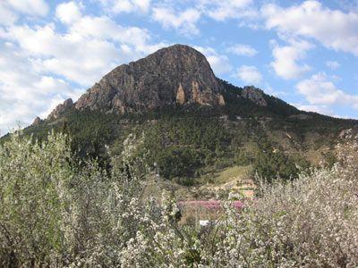Monte de la Atalaya Cieza Las minas de oro en las sierras de Abarán, Cieza y Ricote
