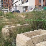 La Basílica Paleocristiana de Joven Futura en Espinardo