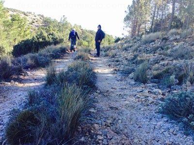 Sierra Espuna Murcia Sierra Espuña tiene nuevo mapa senderista