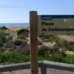 Voluntariado Ambiental en Espacios Naturales de la Región de Murcia