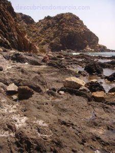 Calnegre Murcia 225x300 Descubre la historia y la naturaleza de Calnegre