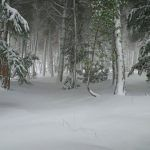 Pozos de nieve de Murcia, Totana, Orihuela, Lorca… en Sierra Espuña