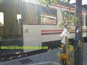 Estacion Tren Murcia El Carmen 300x225 La tomatera y los trenes