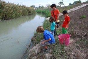 rio Segura Murcia Galápagos Leprosos, Garza Real, Barbos y Nutrias en el Segura