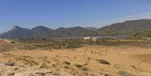 Salinas Rasall Calblanque 300x151 En peligro las Salinas de Marchamalo y del Rasall