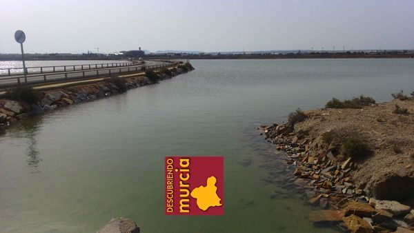 San Pedro del Pinatar Salinas San Pedro del Pinatar: pesca, naturaleza y sal