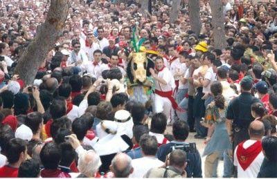 Caballos del Vino Caballos del Vino de Caravaca, nervio y adrenalina