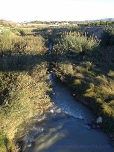 Contraparada rio Segura