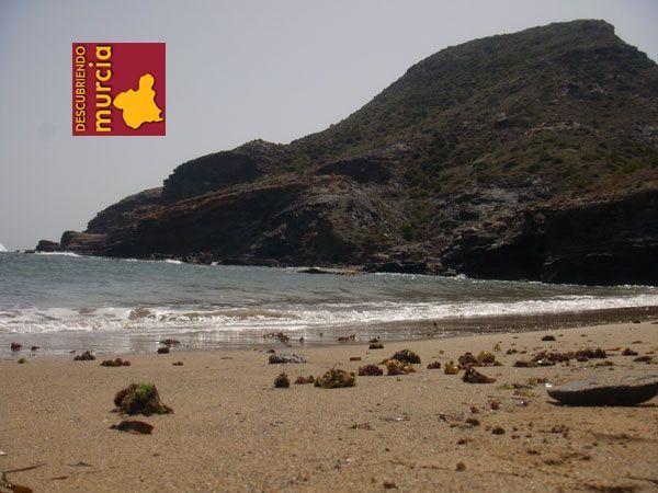 Cala Reona Cabo de Palos Actividades Naturales Mayo 2015 Espacios Naturales Murcia