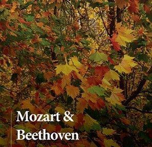 Orquesta Sinfonica UCAM Mozart y Beethoven en Teatro Romea con la Sinfónica UCAM