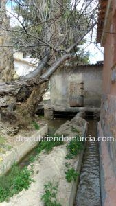 El Partidor rio Chicamo Abanilla Murcia 169x300 Una ruta senderista por el río Chícamo y sus pozas