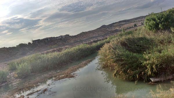 Contraparada rio Segura Murcia La Contraparada y los Reyes Católicos, Enrique II, Sancho IV...