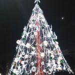 Murcia arbol navidad 150x150 Replantar los árboles de navidad