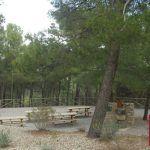 Actividades Naturales Enero 2016 Espacios Naturales Murcia