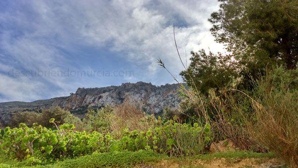 Cabo Tinoso Cartagena Cabo Tiñoso refugio para la naturaleza, los piratas y contrabandistas