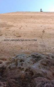 Aledo Murcia 186x300 Aledo, la Orden de Santiago, su torre y los arrecifes de coral