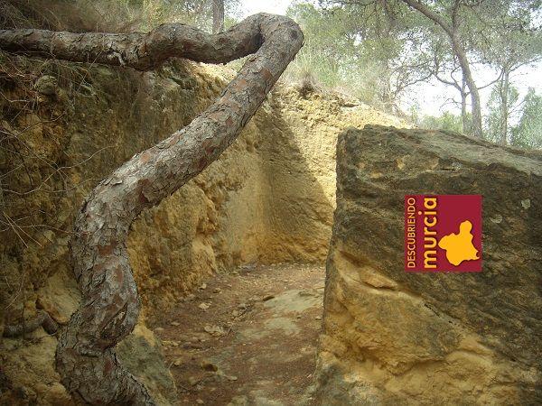 El Valle Murcia Trincheras Trincheras en El Valle Murcia para defender Cartagena